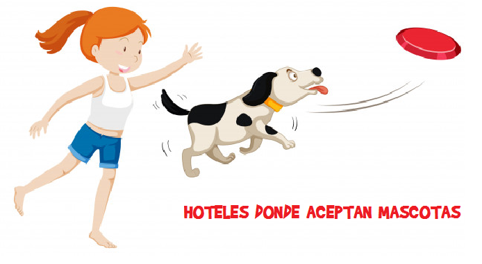 Hoteles en Cartagena donde acepten mascotas