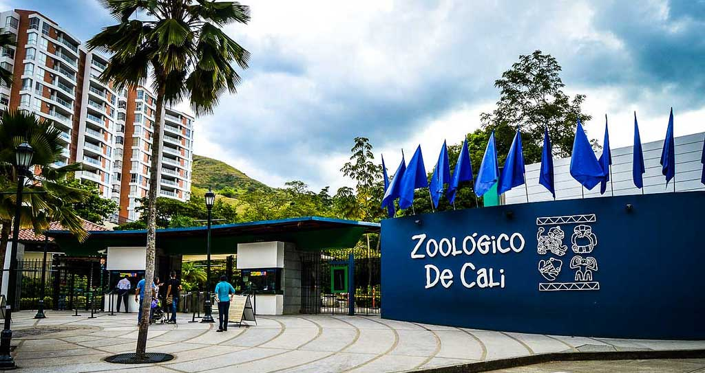 turismo en Cali, zoologico de Cali