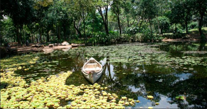 Que hacer en Medellin? Visitar Jardin Botanico