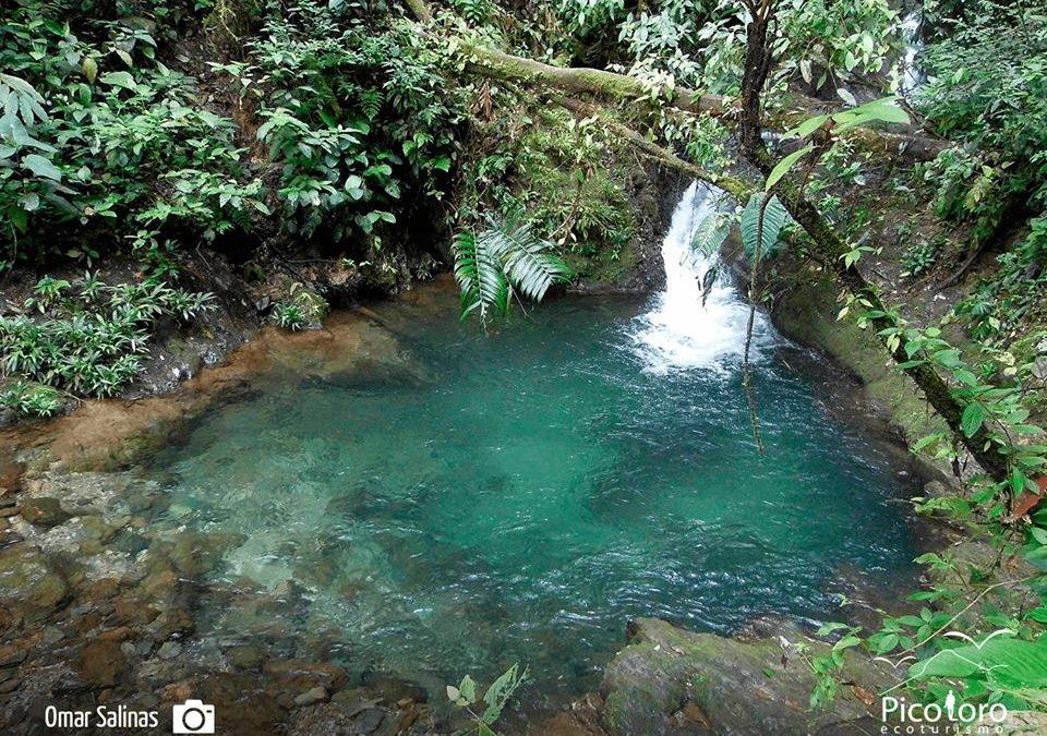 7 charcos profundos para disfrutar en el Valle del Cauca